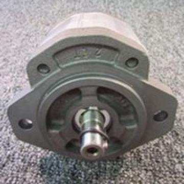 QT2323-6.3-6.3MN-S1162-A Pompe à engrenages hydraulique