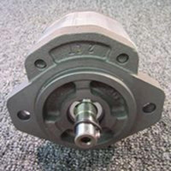 CBW-F310-CFP Pompe à engrenages hydraulique