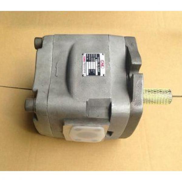 CBT-F430-ALHL La pompe à huile