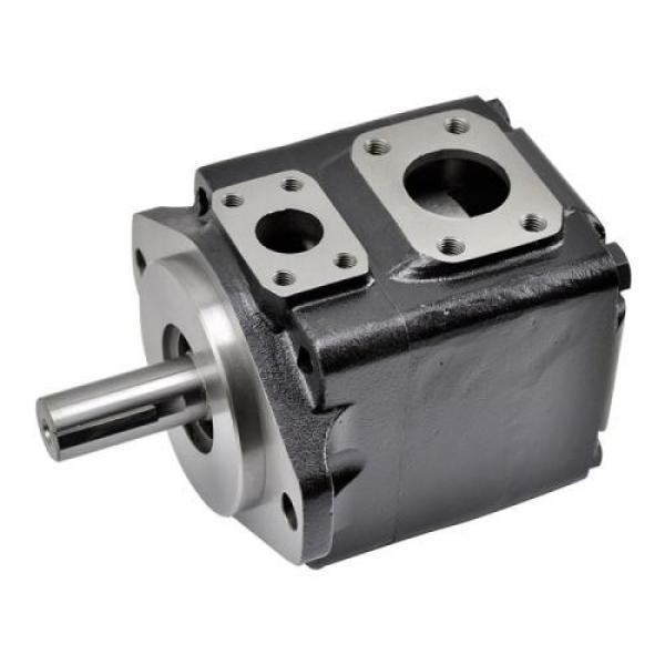2520VQ17C11 11CC20 Pompe hydraulique à palettes
